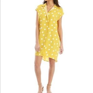 Madison Polka dot Shirt dress